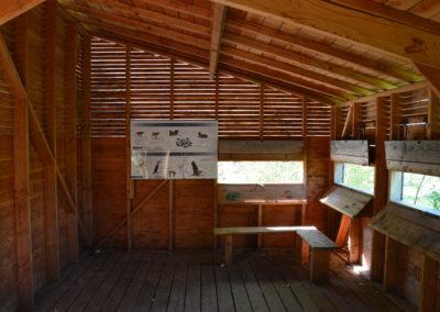 Construction d'un observatoire à oiseaux à Saint Germain des prés